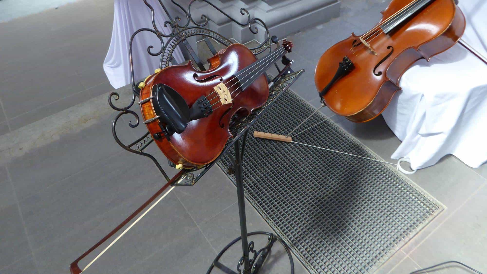 Musik mit Violine zur freien Trauung